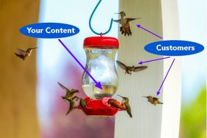 9 Hummingbirds Hovering Around Feeder
